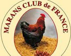 v PUBLICATIONS ET PRODUITS du Marans-Club de France
