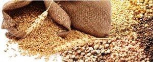 Alimentation céréales naturelles