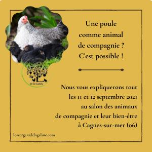 6e salon des animaux de compagnie et leur bien-être